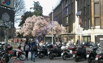 Милан перевалочный: на чем можно, а на чем не стоит экономить в Милане